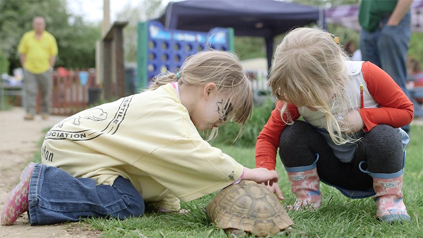 Children playing with a tortoise